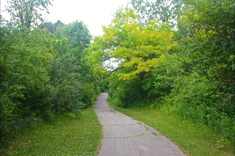 Flint River Trail